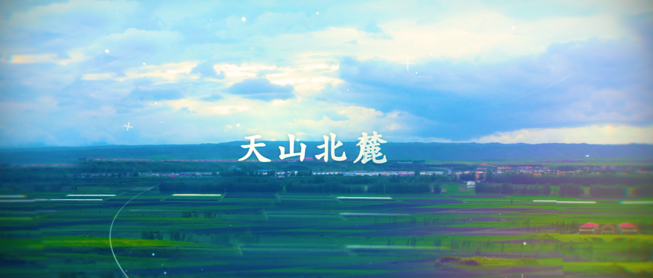 绿城·南山阳光宣传片
